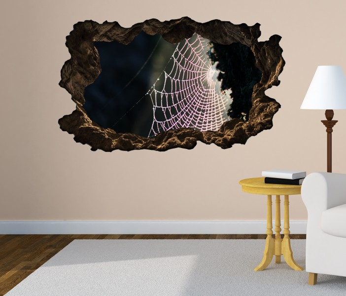 3d wandtattoo spinnennetz spinne tau netz mond bild selbstklebend wandbild wandsticker. Black Bedroom Furniture Sets. Home Design Ideas