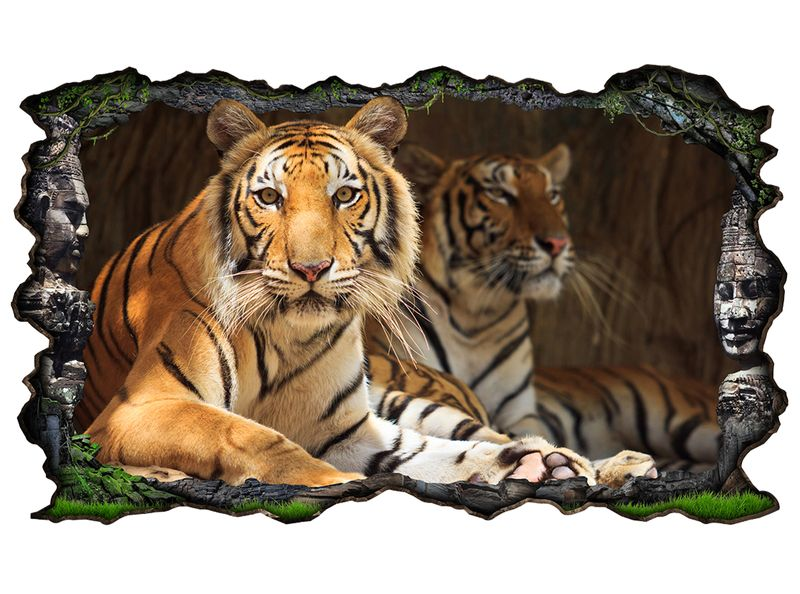 3d wandtattoo tiger augen tier kopf raubkatze bild selbstklebend wandbild sticker wohnzimmer. Black Bedroom Furniture Sets. Home Design Ideas