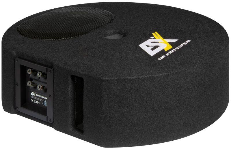 ESX DBX300Q 15 cm x 23 cm Reserverad Bassreflex Subwoofer Ersatzrad  DBX-300Q