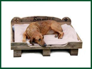 Einführungspreis: My Country Dog Paletten Hundebett UNIKAT Hunde -M – Bild 1