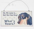 Metallschild Hund MY NAME IS NO! Blechschild 30*15 cm 001