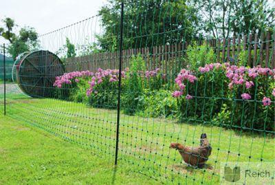 Hühnerzaun Geflügelzaun Geflügelnetz 112cm x 50m nicht elektrifizierbar mit Doppelspitze – Bild 3