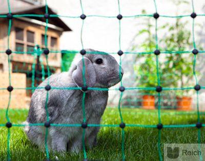 Kaninchennetz 25 mtr. Grün 65 cm, Einzelspitze elektrifizierbar Neu! – Bild 2
