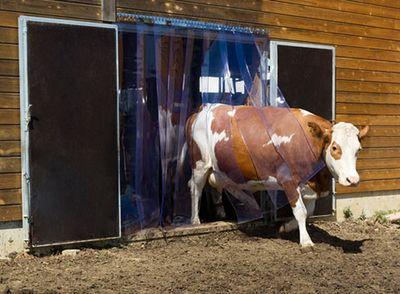 Streifenvorhang-Set PVC Lamellenvorhang vormontiert  130 cm x 225 cm – Bild 8