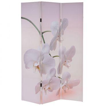 Foto-Paravent, Paravent – Orchidee