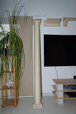 Klettersäule, 2 Längen – Bild 2