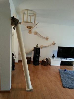 Klettersäule, 2 Längen – Bild 1