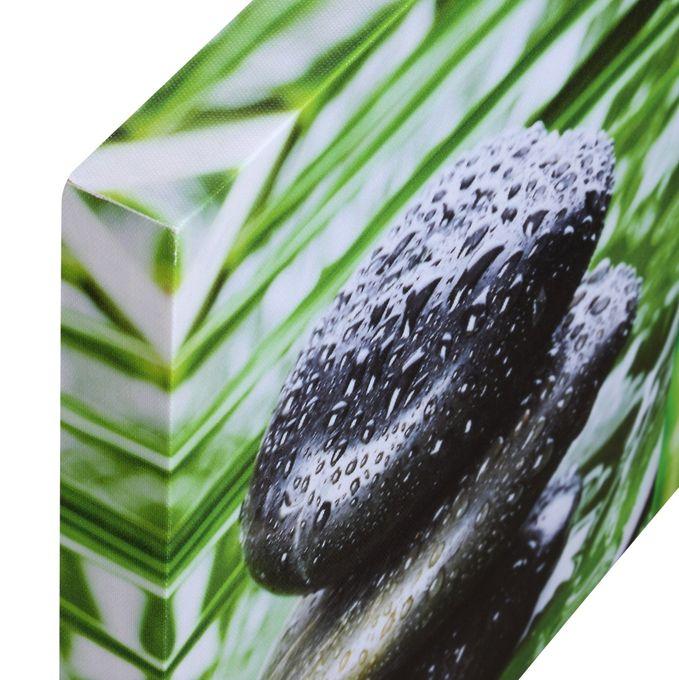 Keilrahmenbild Bamboo – Bild 3