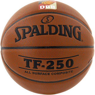 Spalding TF 250 DBB Indoor/Outdoor – Bild 1