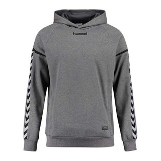 Hummel Authentic Charge Poly Hoodie – Bild 4