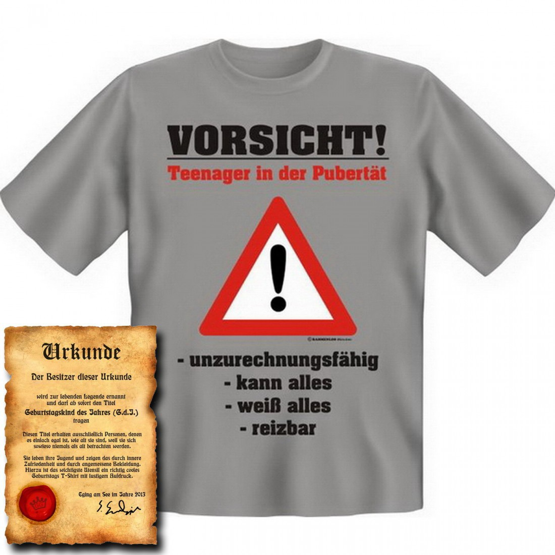 Witziges Spruche Shirt Vorsicht Teenager In Der Pubertat T