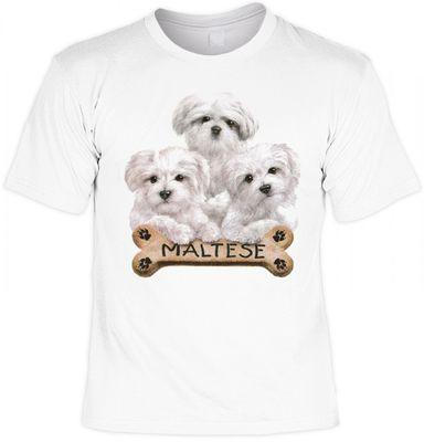 T-Shirt - Malteser - drei süsse Hunde - auch als cooles Geschenk für Hunde Fans