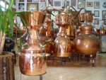 """CopperGarden®"" still Alquitara 75 liters for essential oils"