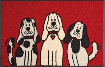 Fußmatte waschbar - Three Dogs - Hunde - 50 x 75 cm - wash+dry – Bild 1