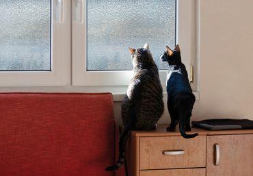 Fensterfolie Classic 140x46cm - statische Dekorfolie Sichtschutzfolie – Bild 3