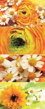Textilposter Blumen gelb und weiß Deko Banner Stoff  Poster 75x180cm