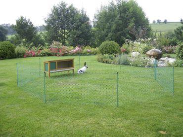 Kaninchennetz 12 mtr. Grün 65 cm, Einzelspitz – Bild 5