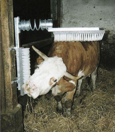 Viehbürste EuroFarm Kuhbürste 50 x 10 cm komplett mit Feder robuste Konstruktion – Bild 2