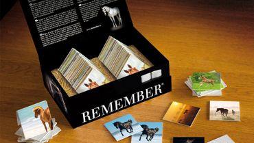 "Gedächtnisspiel ""Remember 44 Pferde"" in der Magnetbox - Remember  – Bild 2"