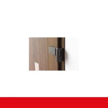 Kunststoff Haustür IGLO 5 Modell 7 Braun Maron ? Bild 8
