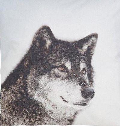 Casatex Deko Kissenhülle Kissenbezug mit Wolf im Winter 50x50 cm