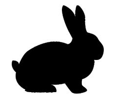 Kauartikel vom Kaninchen