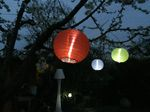 Solar Lampion 5er Kette Celebration BT1523 Solar 10