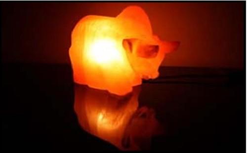 Salzlampe Kuh, 1301, inkl. Elektrik, Salzkristall Lampe Salzlampe Himalaya Salzleuchte  – Bild 1