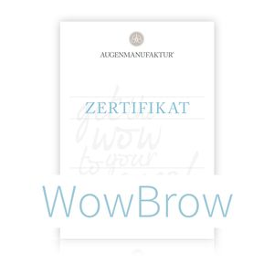 WowBrow & Browlift Schulung 1