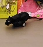 laufende Maus