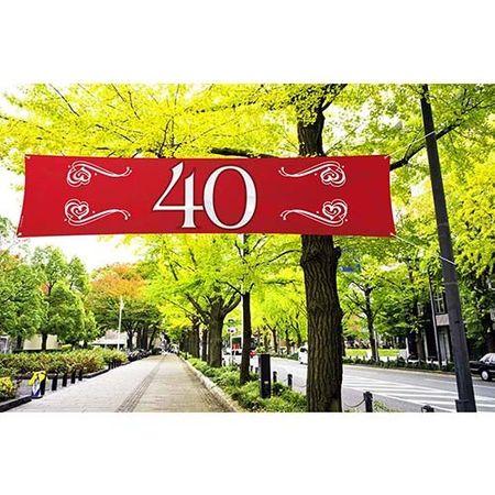 Banner Zahl 40 rot 180 x 40 cm